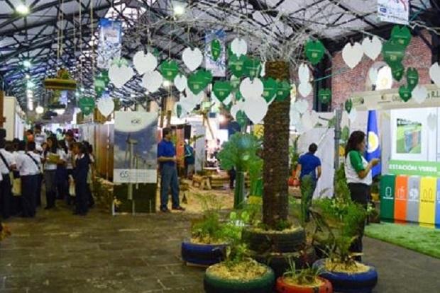 Environmental Fairs