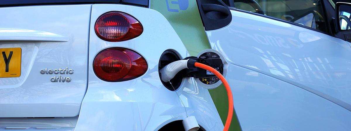 biofuel large
