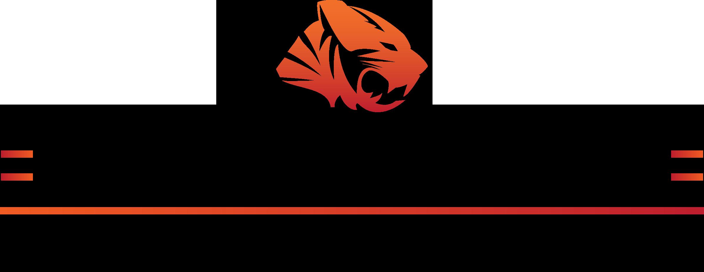 CGT TIGA Awards 2019 Finalist Logo PNG