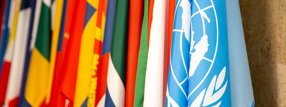 UN - Consultancy pages