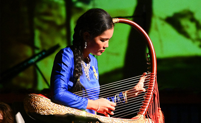 Performer playing a string instrument