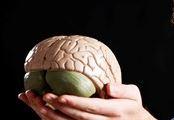 Brain thumb