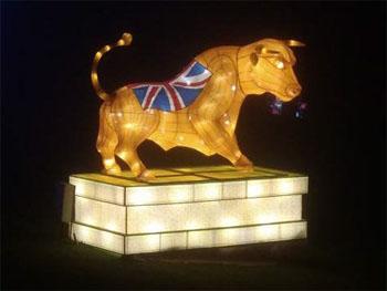 Bull light
