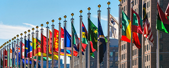 Centre for Human Rights Consultancy Image 341x139 - Flags