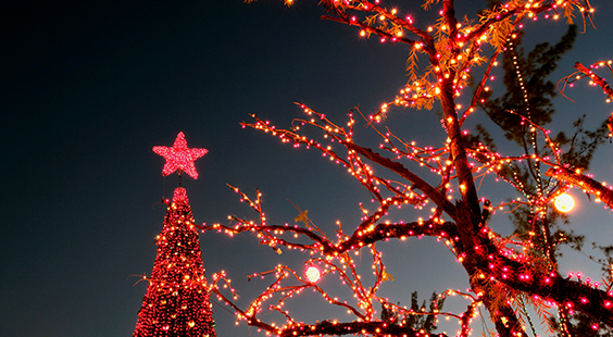 Birmingham Christmas Lights.Four Places To See Christmas Lights In Birmingham In 2017