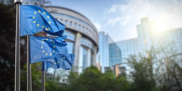 Field Trips 700x350 - European Parliment