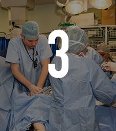 3 health sciences
