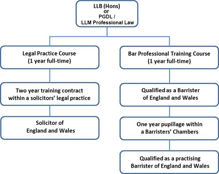 Law- International - How to become a solicitor or barrister flowchart - Flow chart diagram