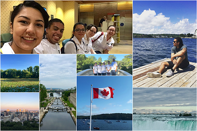 radiography canada collage