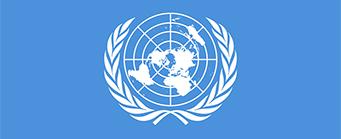 Centre for Human Rights Model UN Image 341x139 - UN Flag