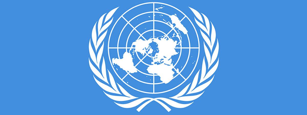 Model UN 1200x450 - United Nations flag