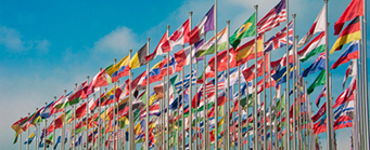 Centre for Human Rights Universal Periodic Review Image 341x139 - Flags