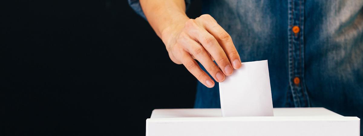 Voting primary